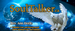Soultalker - Pet Whisperer - Ann Doyle