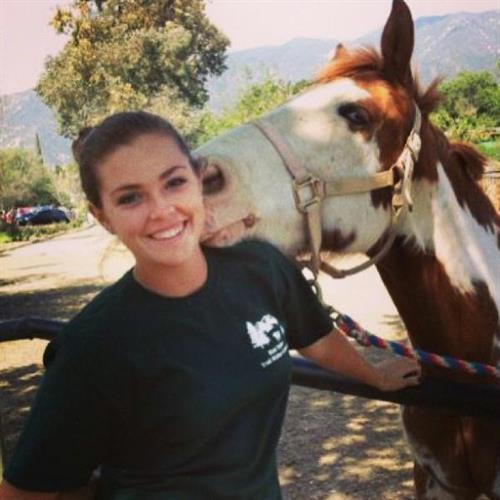 Receive horse kisses...