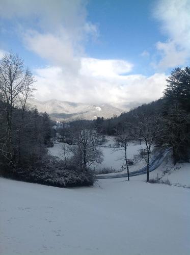 Snow Feb. 2014