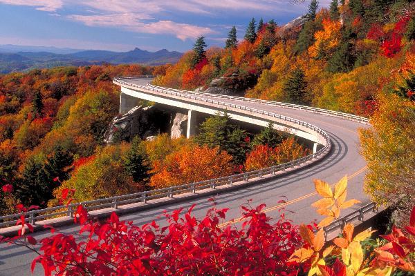 Gallery Image viaduct-fall.jpg
