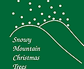 Snowy Mountain Christmas Shop
