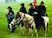 Battle of Perryville Commemoration