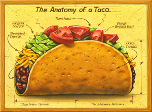 Anatomy of a Taco