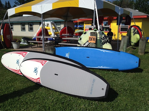 Adult and Junior paddle boards