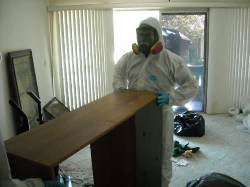 Bio hazard cleaning in Palm Coast