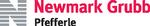 Newmark Grubb Pfefferle - Wausau