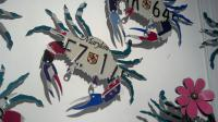 MD License Plate Crabs.  Want to use your own plate?  Call me.