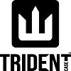 AFC Trident, Inc.