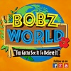 Bobz World