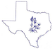 Bluebonnet Home Health Care of Texas, Inc.