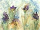 Wild Iris Salon