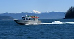 Island Express Charters, Inc.