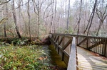 Martin's Mine Trail 15 Smithgall Woods State Park