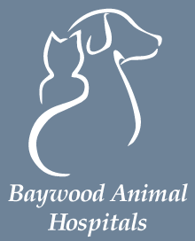 Baywood South Animal Hospital