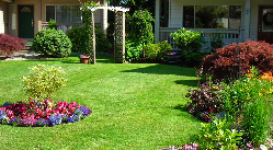 Gallery Image Jeff-White-PropertyPhoto2.png