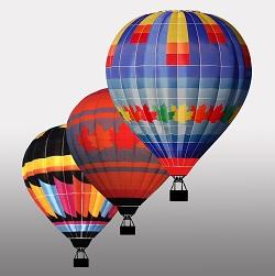 Air Display Hot Air Balloon Team