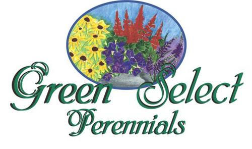 We are the Growers of 'Green Select Perennials'