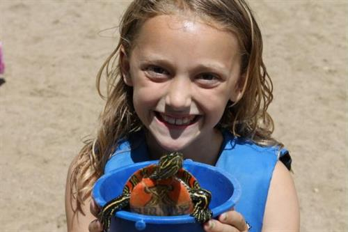 Turtle races is always a favorite activity among the children.