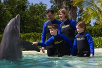 A Dolphin Encounter is fun for the whole family!