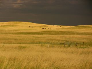 Photography of Cheyenne High Plains