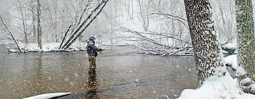 Gallery Image fisherman-in-snowy-river.jpg