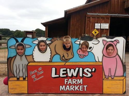 Lewis Farm Visit