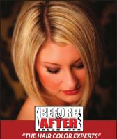 Hair Color Experts on The Hair Color Experts  V03 Jpg