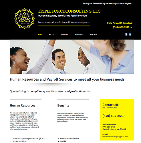 Triple Force Consulting - Website Design