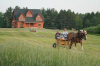 Book a wonderful wagon or sleigh ride with Saffron our Belgian.