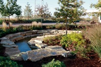 Water-conserving landscape feature