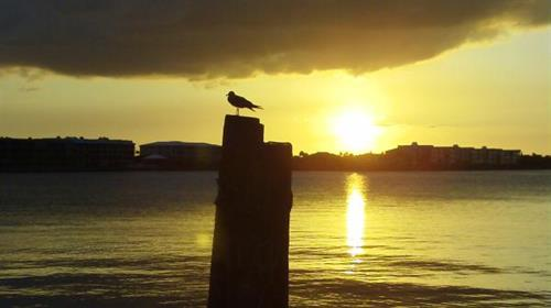 Beautiful Sunset  November 2011