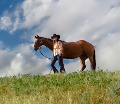 Wild Wilderness Horseback 1/2 day and full day nature riding workshops