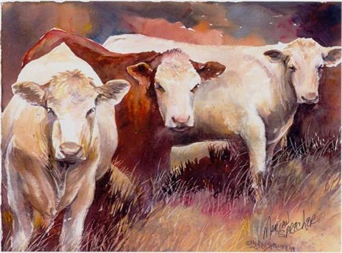 STEVES COWS#1