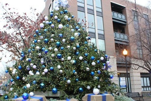 Gidding's Plaza Christmas Tree 2014