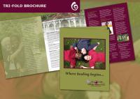 Bethesda Children's Home Brochure