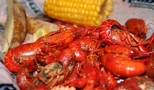 Crawfish is on our menu