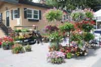 Krystal Gardens