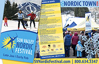 Nordic Festival logo and projects