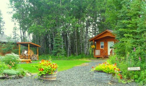 Well kept grounds and clean cabins await you at Aspen Hollow Lodging