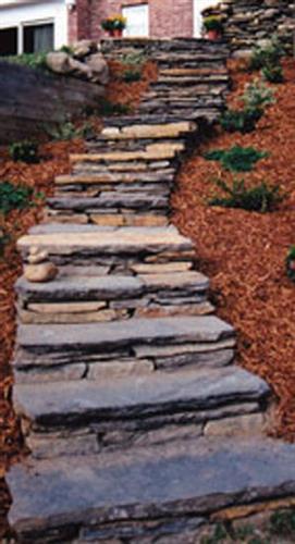 Gallery Image steps.jpg