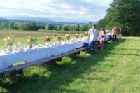 Farm to Table dinner setting