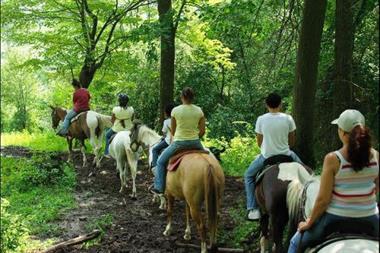 Horseback Riding Stables at Deep Creek Lake - Circle R Ranch
