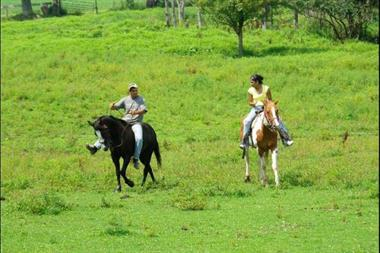 Horseback Riding Stables at Deep Creek Lake - Circle R Ranch