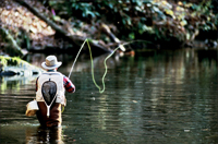 Our area is great for fly-fishing and we offer guided tours.