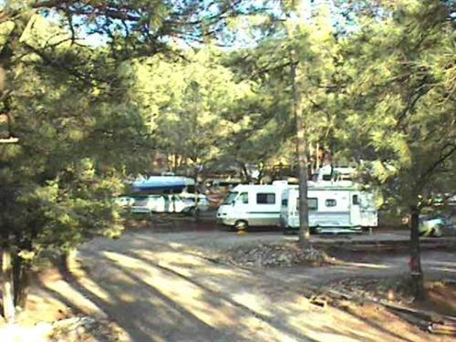 Pine Ridge Campground Rv Parks Amp Campgrounds Member