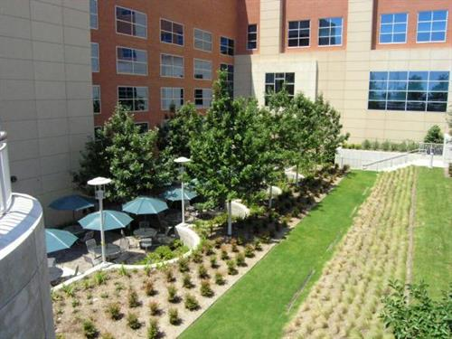 A garden level patio is available for patients and guests.