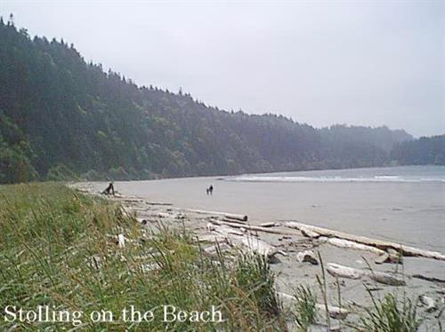 Gallery Image Crescent%20Beach%20and%20RV%20Park6.jpg