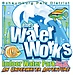 Water Works Indoor Waterpark - Schaumburg Park District