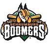 Schaumburg Boomers Professional Baseball