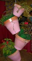 Pink Pots on Hanger - Click on ''Highlights'' then ''Plant Hangers''